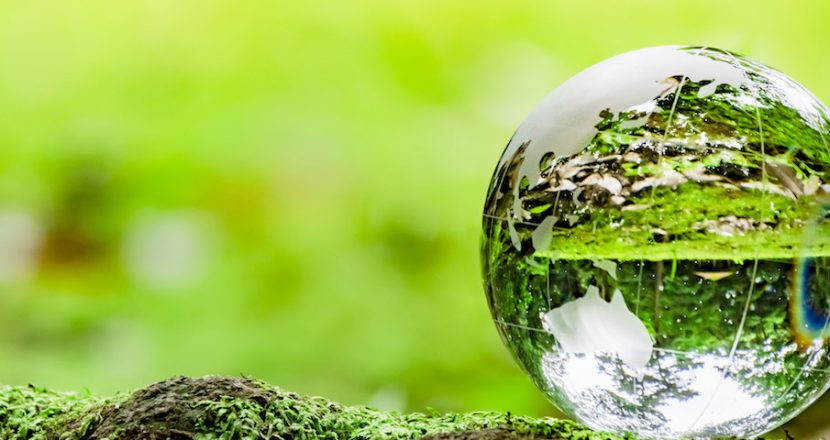 CSR・環境対策への取組み